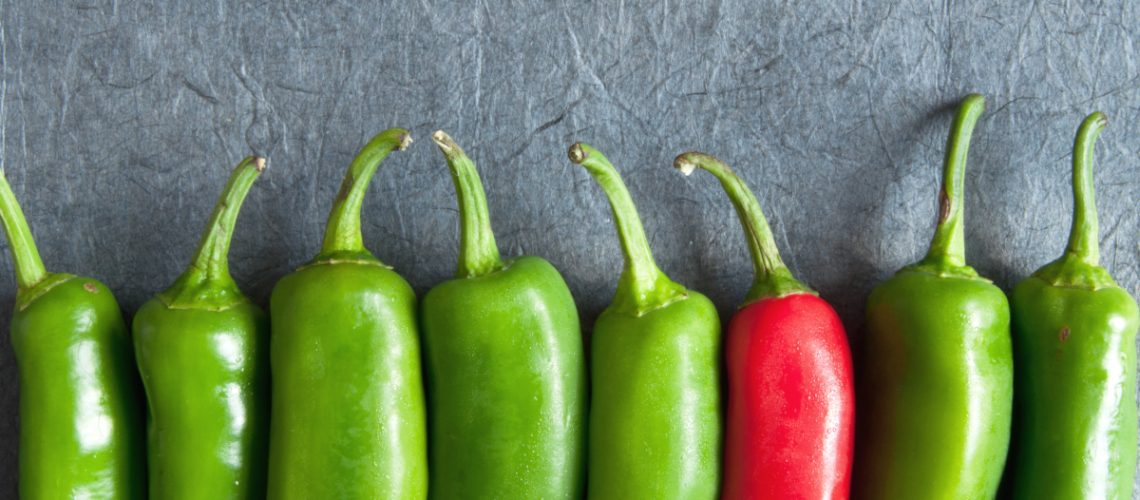 Row of green chillis with one red pepper